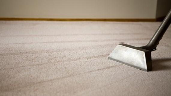All Green Carpet Clean Same Day